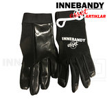 Innebandyesset Goalie Gloves